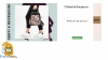 Promotie Zenda Reduceri de pana la 60% la Genti & Rucsacuri